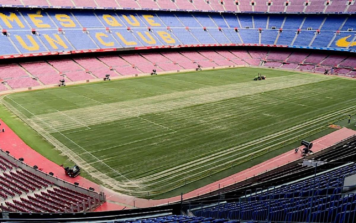 Tareas de mantenimiento en el césped del Camp Nou