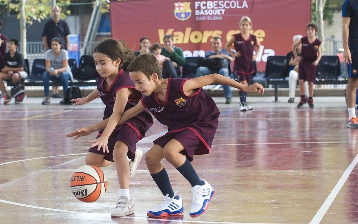 El Campus de Nadal inaugura les seccions de bàsquet, handbol i futbol sala