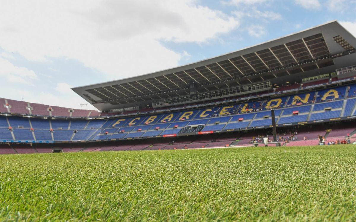 El césped del Camp Nou, listo para el Gamper