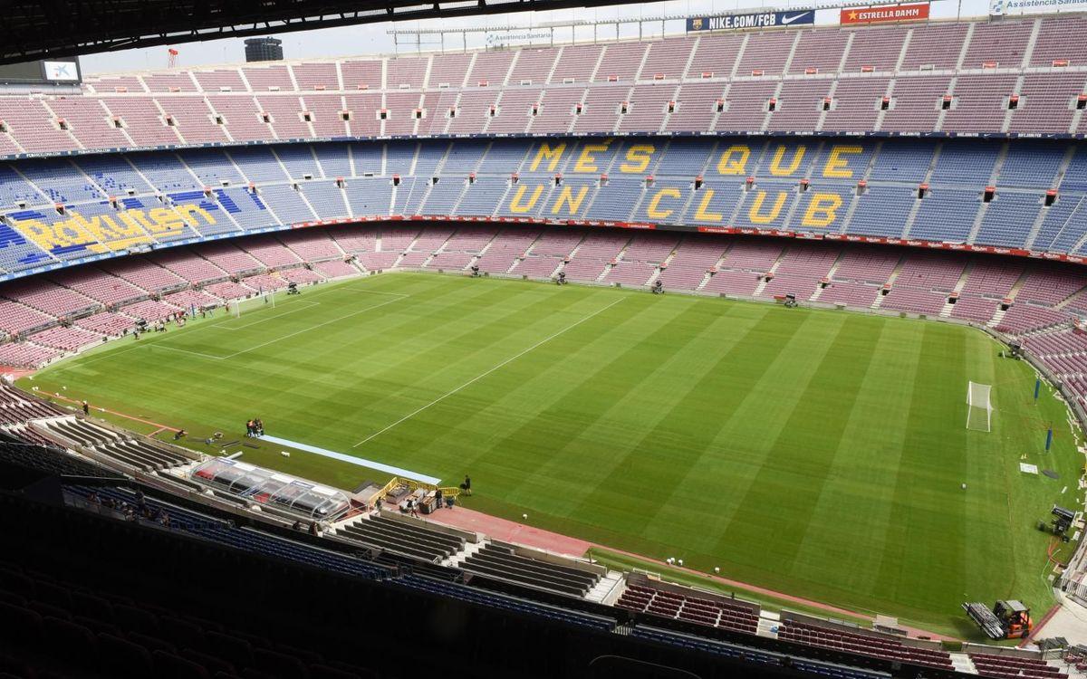 El césped del Camp Nou, listo para el Gamper. Paco Largo-FCB