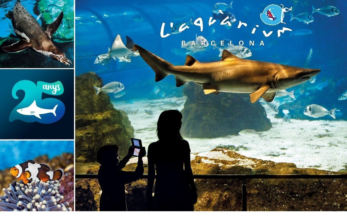 L'Aquàrium de Barcelona fa 25 anys i vol celebrar-ho amb tots vosaltres