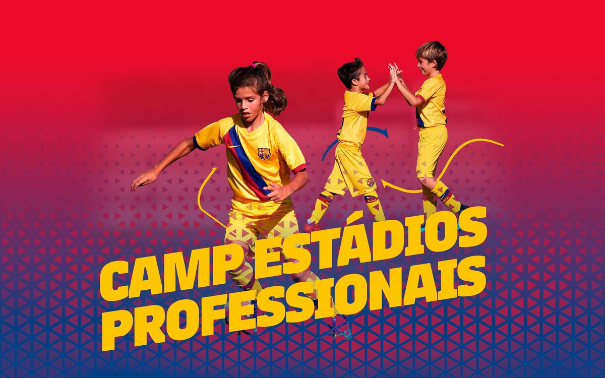 Academy_Estadios_Professionais_3200x2000