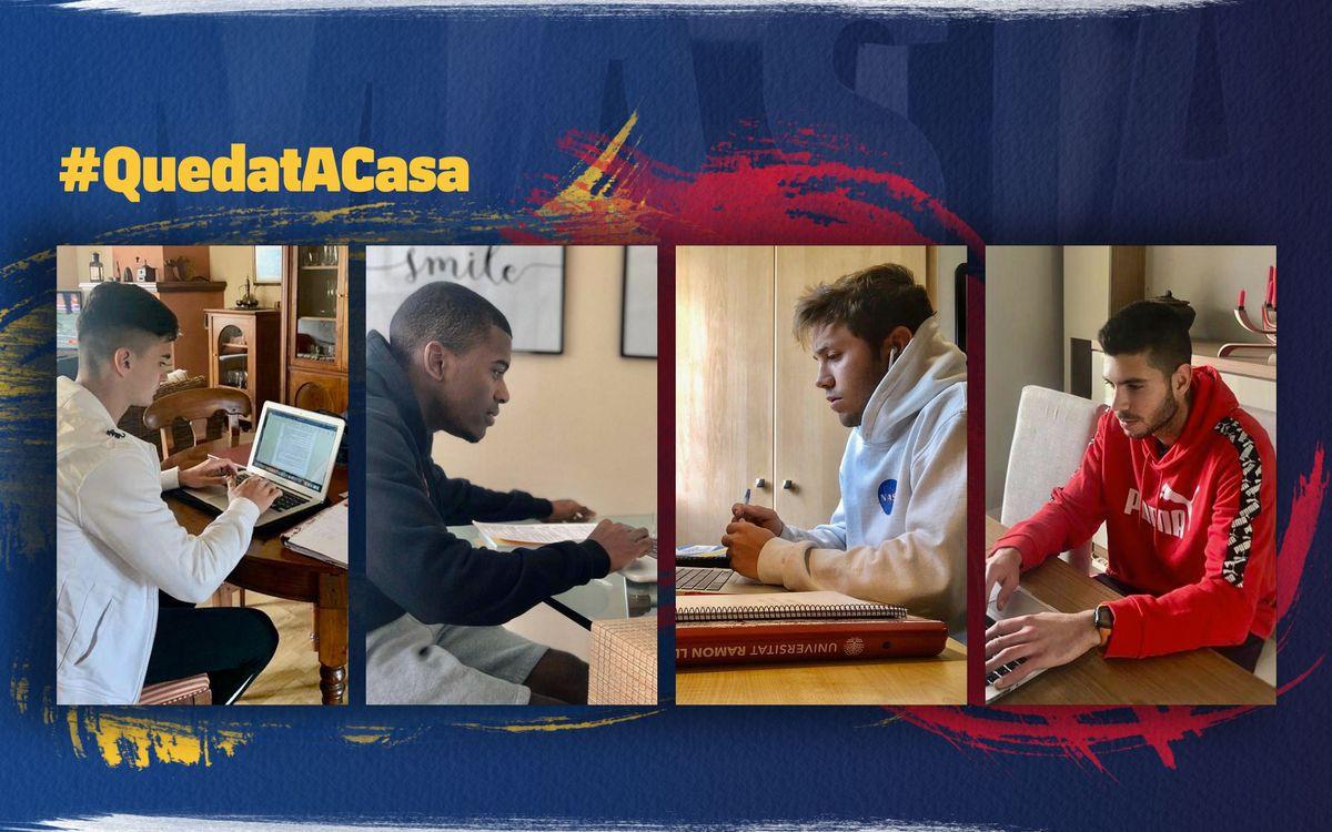 Estudis 'on-line' des del confinament